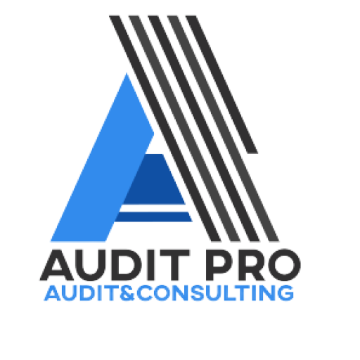 Audit Pro Logo