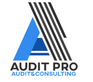 Avada Accountant Demo